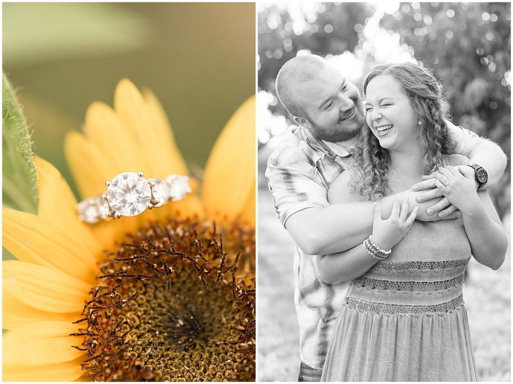 Engagement photos at Wea Creek Orchard's sunflower festival in Lafayette, Indiana
