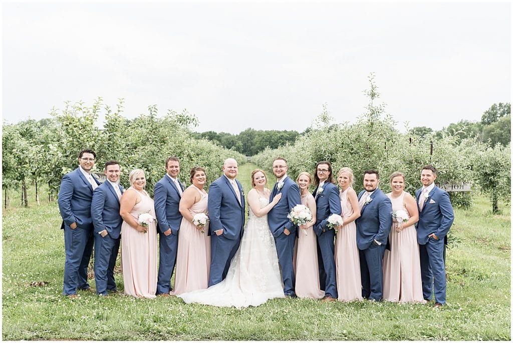 Bridal party photos at County Line Orchard wedding in Hobart, Indiana