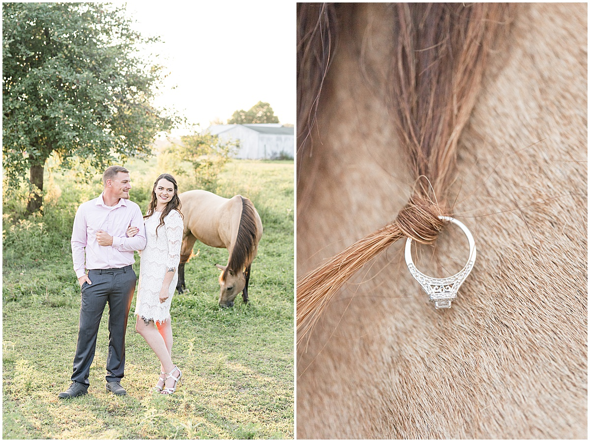 Engagement photos with horses in Veedersburg, Indiana by Lafayette, Indiana wedding photographer Victoria Rayburn Photography