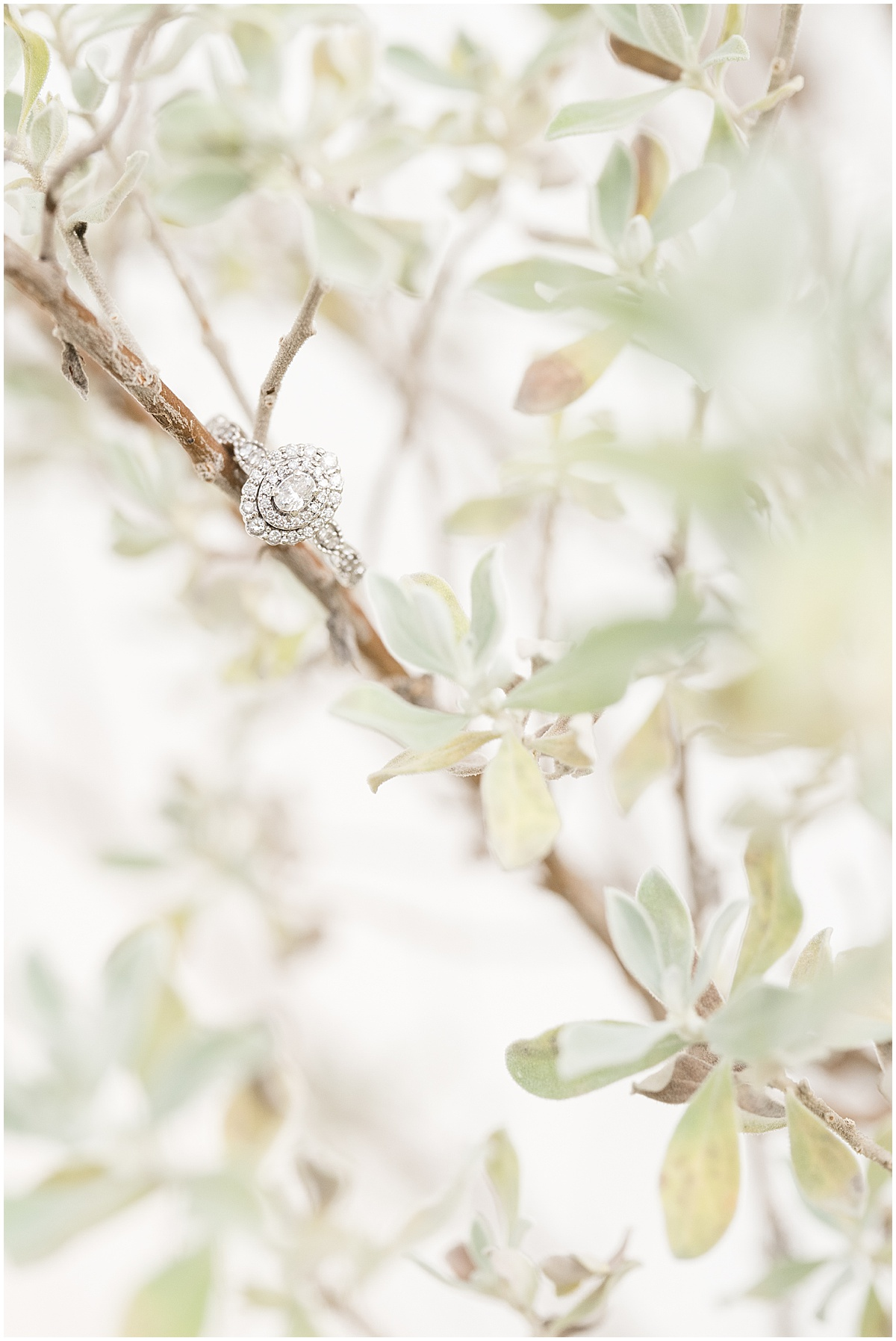 Newfields engagement photos by Indianapolis wedding photographer Victoria Rayburn Photography